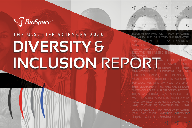 20201119 - Diversity and Inclusion Report - Web LP Image - 660x440