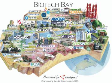 Biotech Bay 2020
